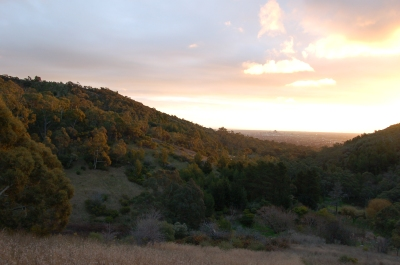 My home town. View from the Adelaide Hills to the CBD on the plain. Credit: Edwin Davis, 2006, http://bigeggmedia.com.au