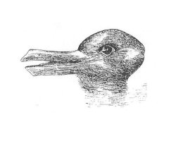 duck-rabbit-ambiguous-image